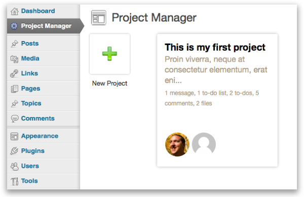 The Project Manager screen