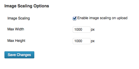 Enable Image Scaling options