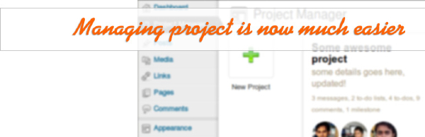 wp_project_manager_bg